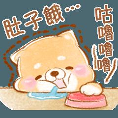 日常生活❤療癒柴犬