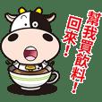 Milk Cow 02