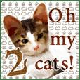Oh my cat's!2超リアルネコスタンプ