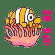 海水魚と亀ちゃん