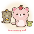 Strawberry Cat ストロベリー猫♪