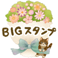 [BIG] Cat sticker
