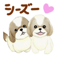 Shih Tzu communication sticker