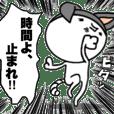 Oh!!My Cat!!