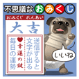 Innocent pug and friends 2 (Omikuji)