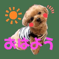 伊藤家の愛犬ぺこちゃんスタンプ2
