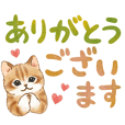 Cat sticker (Large letters)