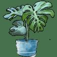 I love plant, plant love me too