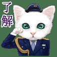 White kitty diary Mandarin Chinese