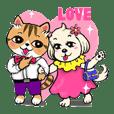 Cat Duo and Dog Niu Niu  Love Story