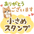 Cat sticker (compact size)