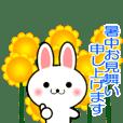 うさぎちゃんの夏!