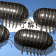 Pill bug on the smartphone 2