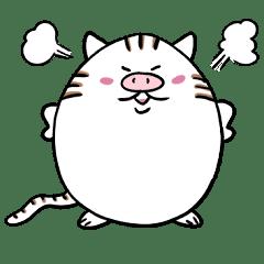 豚猫の日常生活 coo