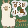 NiMa Alpaca