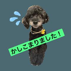 seriaki_20200808113610