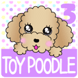 The Toy Poodle stickers 3