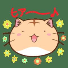 ポヨポヨ観察日記