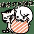 阿木の飼養日誌