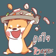 TUKJAI Shiba Naughty dog 4