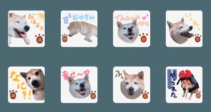 Yamada san_20200809082737