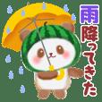 Water melon panda