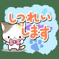 リボンと三毛猫【絵の具編】