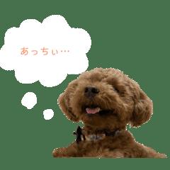 びびっこ vol.2