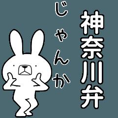 BIG Dialect rabbit [kanagawa]