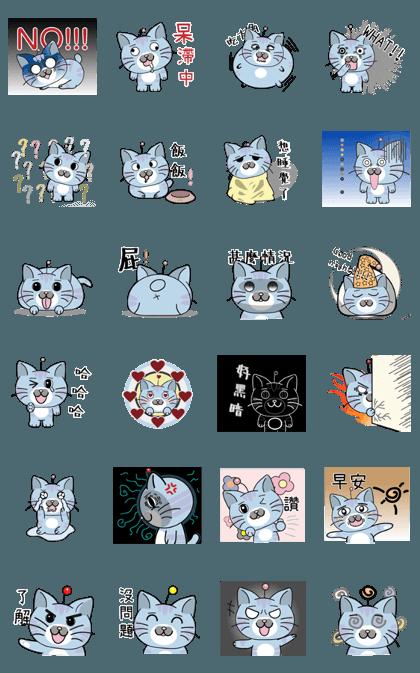 216 Cat