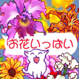 Flowers with a cat