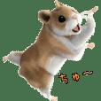 Sell Cute Hamster