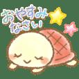KAMEKO(turtle)2