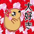 Kyapibara women's flower