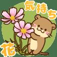 コツメカワウソ♡毎日花と気持ち