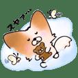 癒しパピヨン犬 ポポちゃん Vol.2