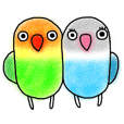 Japan`s kansai dialect-speaking lovebird