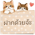 Cat sticker (Free message) Thai