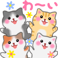 Four plump cats animation