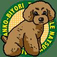 Wanko-Biyori Toy poodle