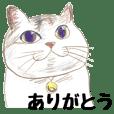 手描き・猫ちゃん