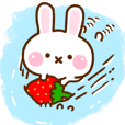 Rabbit Strawberry 10