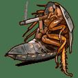 Amazing Cockroach