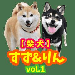 【柴犬】すず&りん vol.1