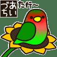 Lovebird [Ver6](move/response No.2)