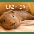 Capybarand Official