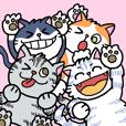 Happiness Catz