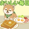 Puppy of Mameshiba greets with food
