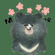 Formosan Black Bear.