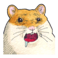 Very cute hamster sticker